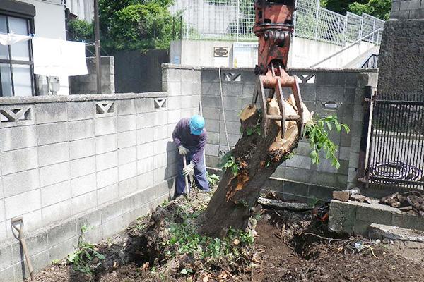樹木抜根作業