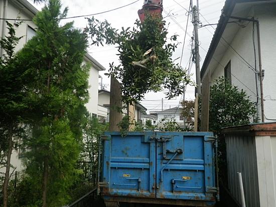 植木の積み込み